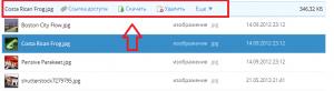 Скачивание файла DropBox