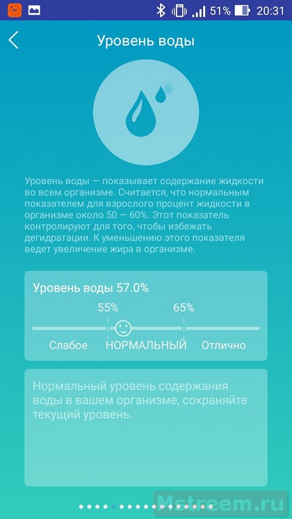 Справка по параметрам тела. Умные весы MGB Body Fat