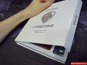 Электронная читалка Onyx Boox Livingstone